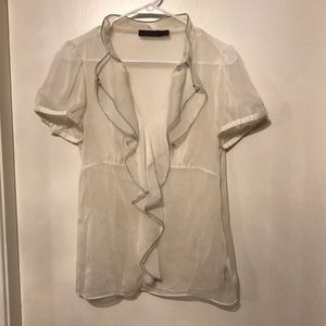 The Limited sheer & classy work blouse